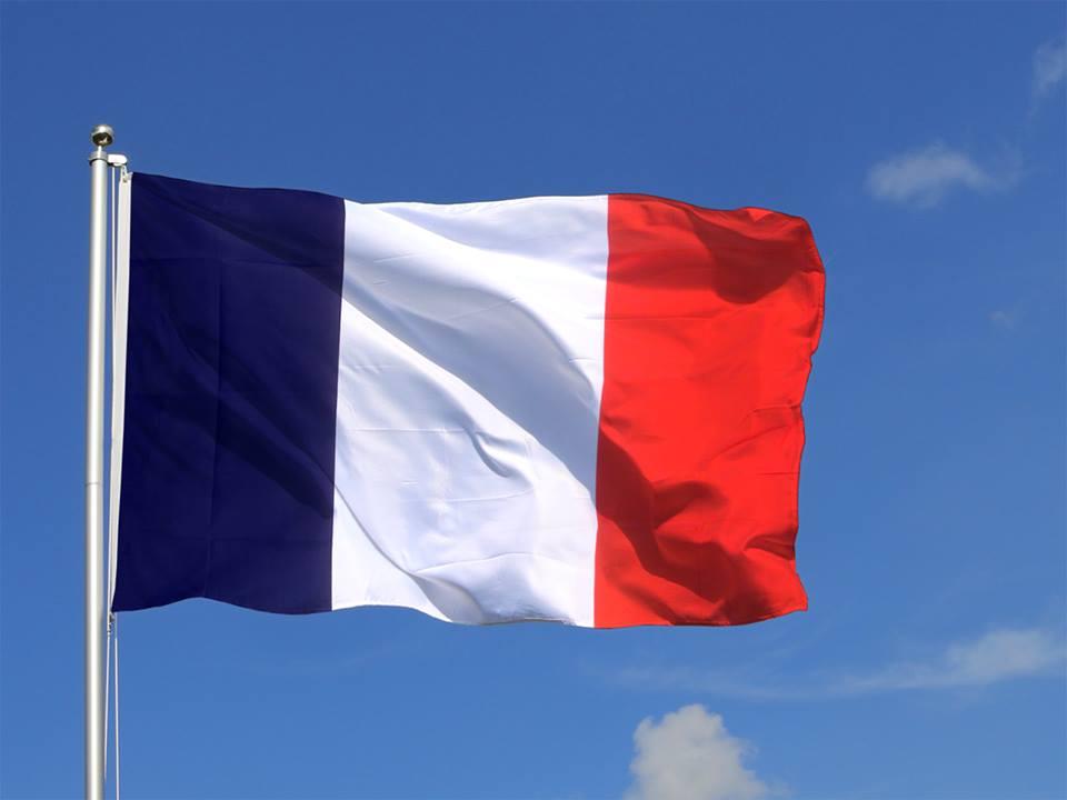 LE DRAPEAU MARTINIQUAIS, AU-DELA DES CONTROVERSES PAR Yves-Léopold MONTHIEUX;