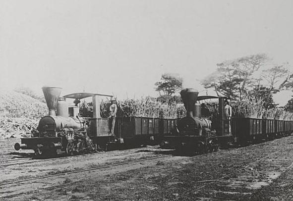 Transport des cannes à sucre [par train] 1930-1939