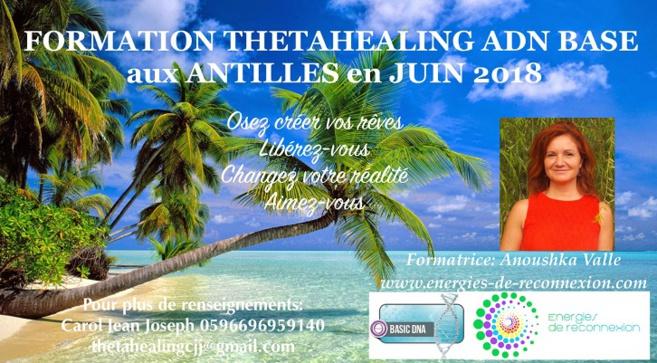 Vous voulez transformer votre vie avec le ThetaHealing ?