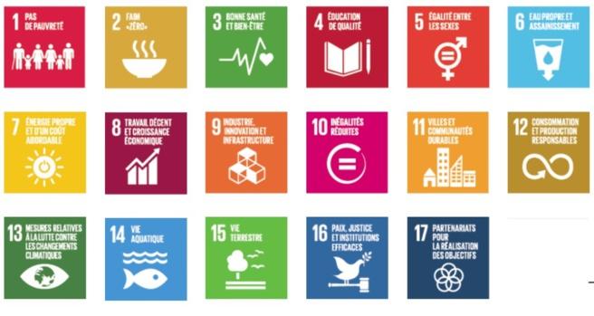 Voici les 17 principaux axes du développement durable. Pour agrandir la photo cliquez sur l'image