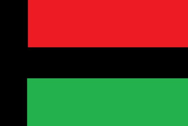 La Collectivité du territoire a choisi son drapeau, il sera rouge vert noir !