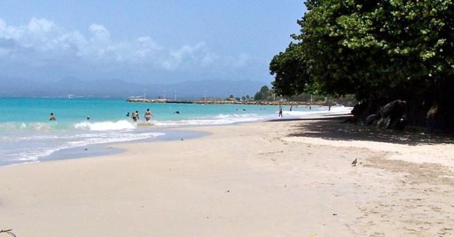 Datcha est une plage en guadeloupe à ne pas confondre avec le restaurant du même nom au Carbet en Martinique