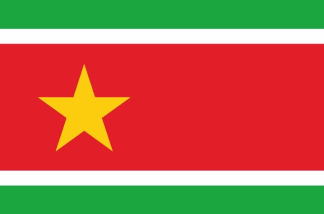 Guadeloupe... Les forces populaires veulent aussi de leur drapeau, mais précisent lequel !