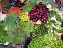 Présentation des travaux de valorisation des filières végétales; Que fait l'état en Martinique sur cette question