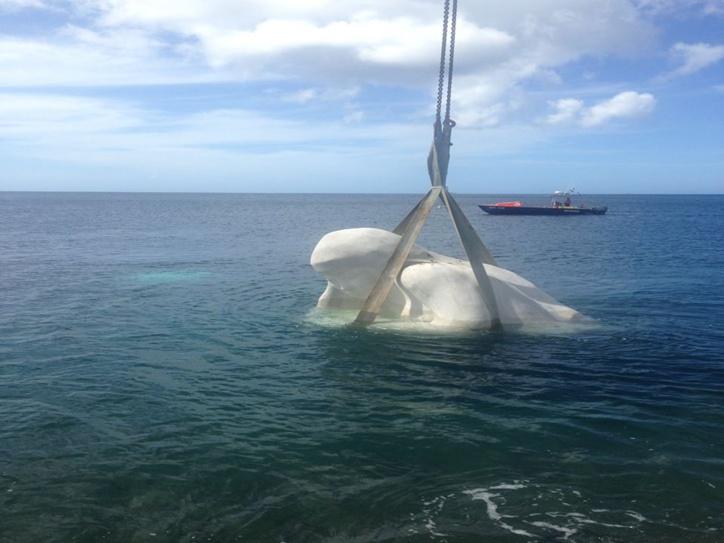 Dans le cadre du mai de Saint-Pierre, le Maire Christian RAPHA et l'Artiste Laurent VALÈRE ont inauguré la sculpture sous-marine