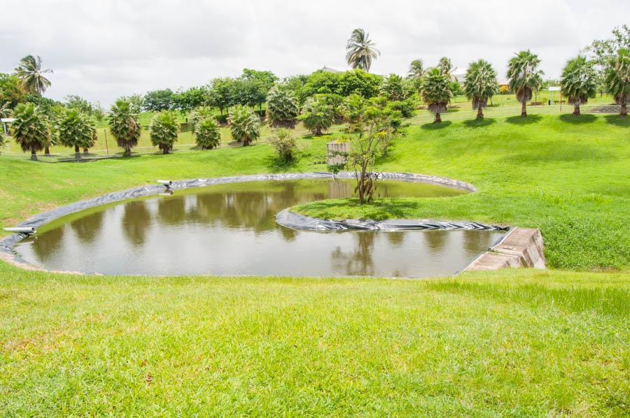 En raison d'une avarie à la station de pompage Manzo, la distribution de l'eau d'irrigation est perturbée sur le Périmètre Irrigué du Sud Est;