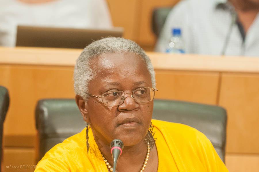 Déclaration du CNCP à propos du coup d'Etat contre Dilma ROUSSEFF par  Marie-Hélène Léotin pour le CNCP