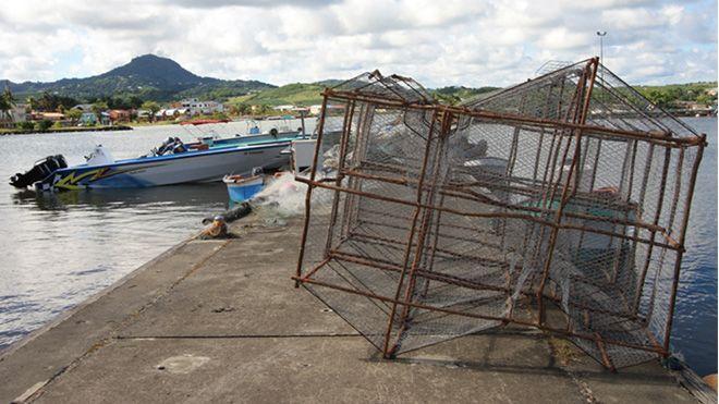 Image Martinique Première