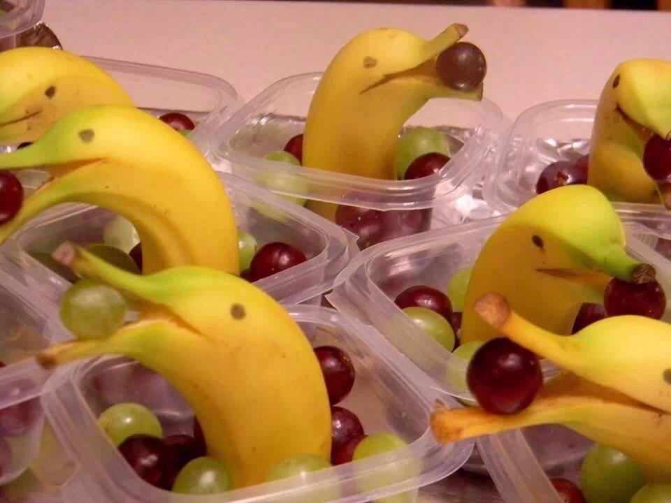 MAKAC LA  aime ceux qui savent faire imaginer des dauphins dans une banane.