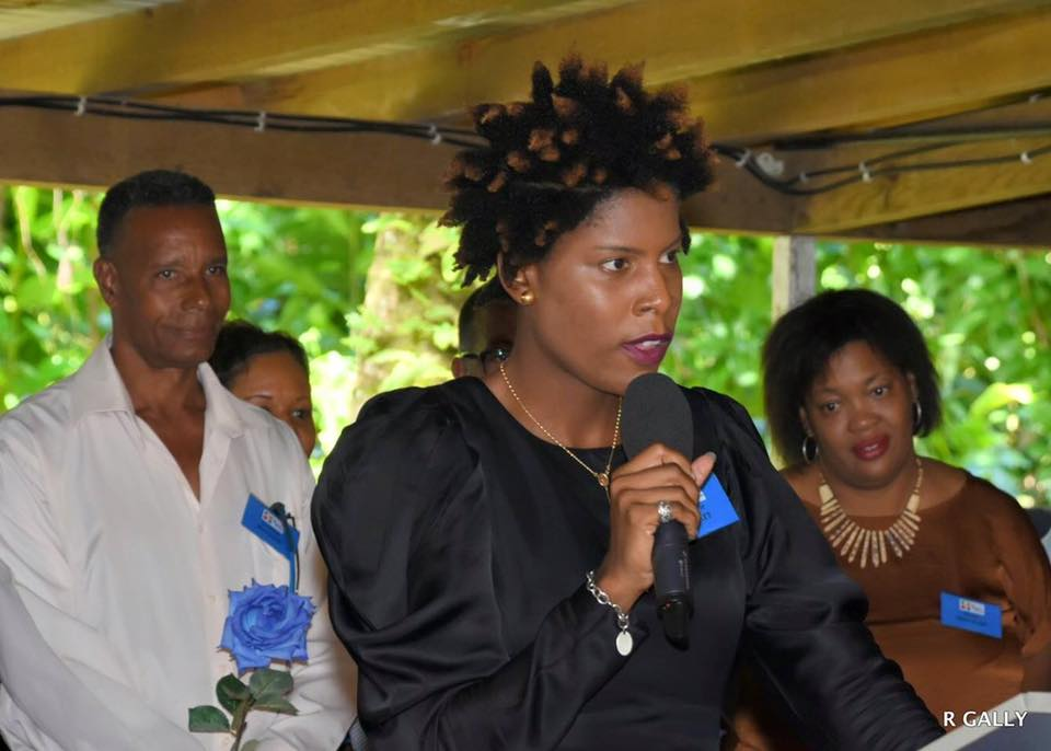 Je suis une femme, une militante qui aime son parti politique, et qui ne peut cautionner la prise d'otage! Tribune d' Audrie Nollet