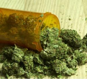 Le gouvernement de Saint-Vincent-et-les Grenadines vers la mise en place d'une industrie du cannabis médical.