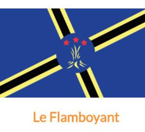 Président ..Pourquoi un des drapeaux de la sélection de la CTM a plus de trois couleurs ?