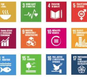 Connaissez-vous les grands principes du développement durable ?