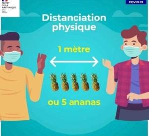 """Le préfet de Martinique s'excuse de la créativité """"ananastèque"""" de son service communication"""