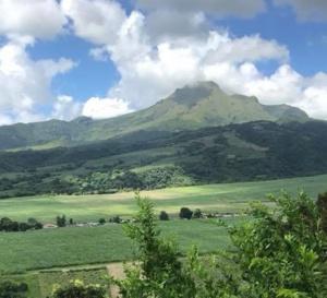 [ Vigilance Jaune Volcan ] La Montagne Pelée ne ronfle plus !