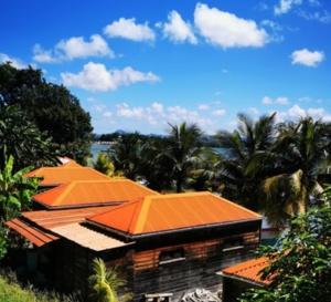 Des motifs impérieux seront mis en place pour se rendre en Guadeloupe et en Martinique !