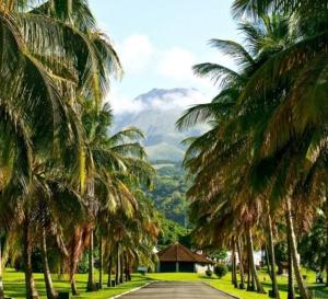 Délégation Caribéenne, c'est la fête au Carbet. Saint-Pierre pleure à l'ombre de la pelée? Par citoyenne Pierrotine