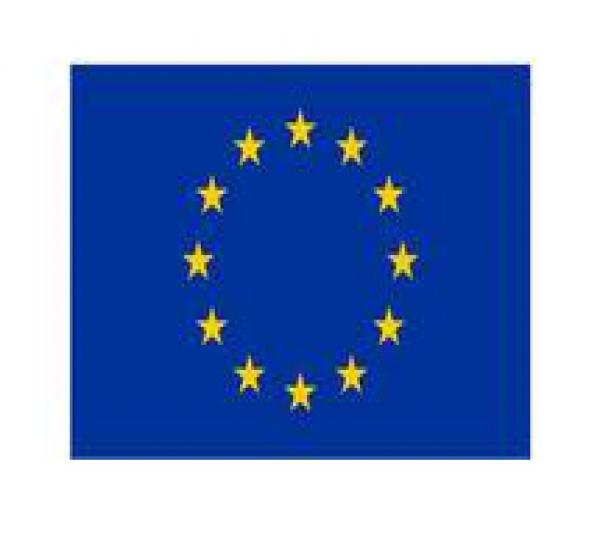 LA VERITE SUR LES  MENUS POUVOIRS DU PARLEMENT EUROPEEN
