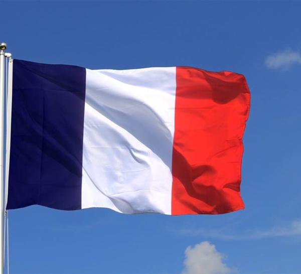 Législative que se passe-t'il à Paris en attendant le 27 Juin