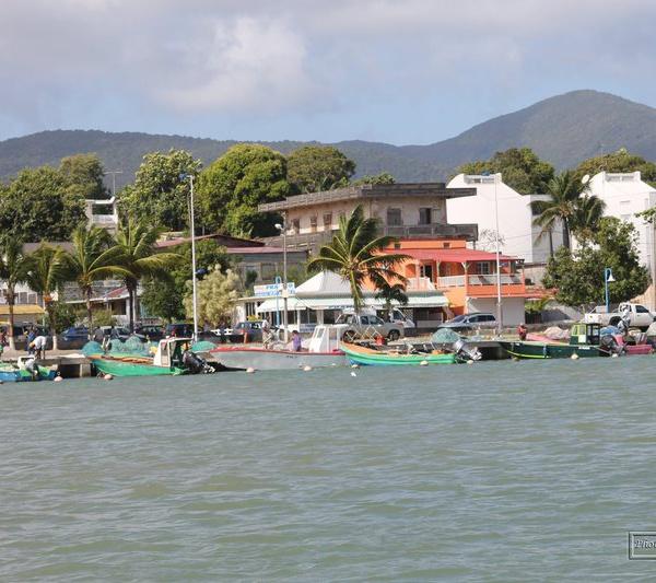 ALBIOMA : Mise en service de la centrale photovoltaïque avec stockage de Sainte-Rose en Guadeloupe