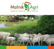 Le Salon de l'Agriculture de Martinique : Doubout pou lagrikilti péyi-nou !