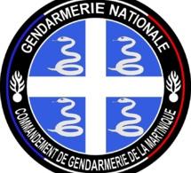 [GENDARMERIE] Cérémonie de prise de commandement du chef d'escadron Julien DE LA FUENTE.