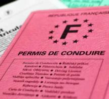 On pourra donc voter encore avec un permis de conduire en carton rose, et ce jusqu'en 2033 »