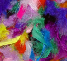 Grenade / Mise en garde contre l'indécence et le comportement obscène pendant le carnaval