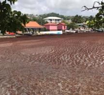 Le Robert - Martinique - 16 août 2019 - l'air est irrespirable ! ( Contribution lecteur )
